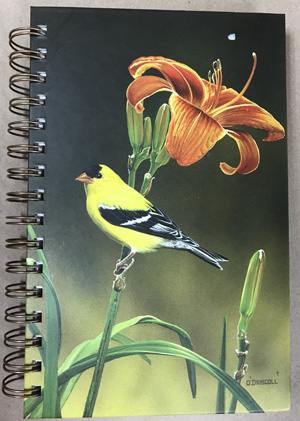 Artist Pine Ridge Art Art Journals